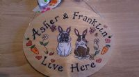 BUNNY HUTCH RUN CAGE OR BEDROOM SIGN ANY COLOUR RABBIT WOODEN PERSONALISED OVAL ORDER